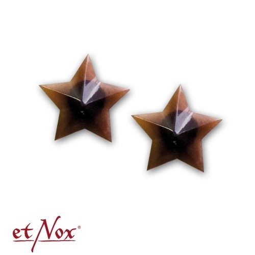 "etNox-Ohrstecker ""Rock´n Roll Star"""